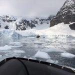 Zodiac tour through the ice